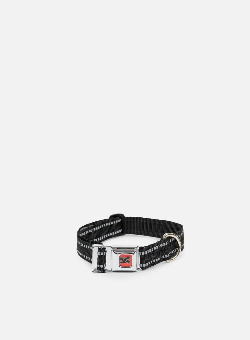 Chrome - Mini Buckle Dog Collar, Black/Black