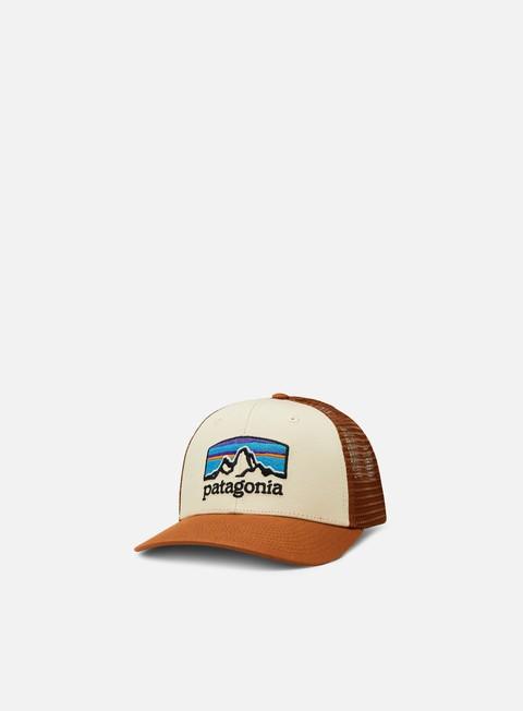 Curved Brim Caps Patagonia Fitz Roy Horizons Trucker Hat