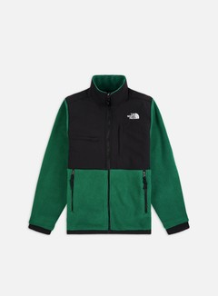 The North Face - Denali 2 Jacket, Evergreen