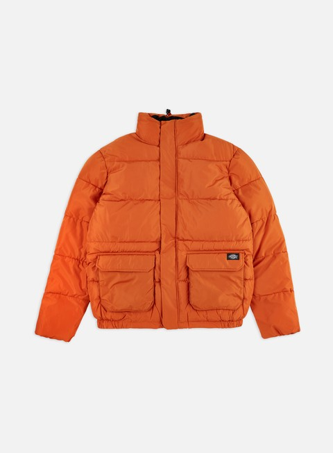 Winter Jackets Dickies Olaton Jacket