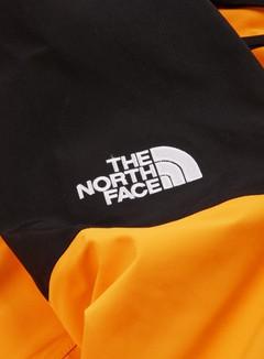 The North Face 94 Retro Mountain LT Futurelight Jacket