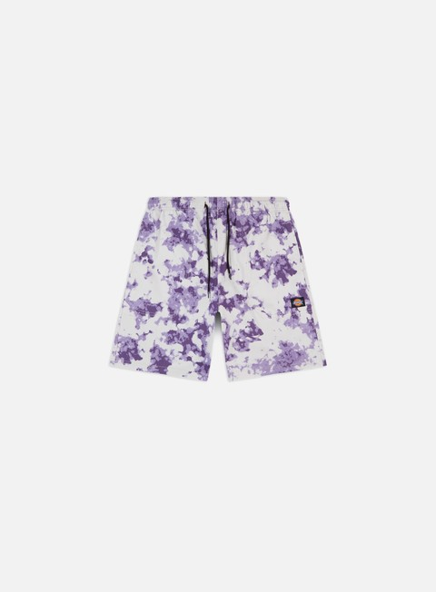 Dickies Sunburg Shorts