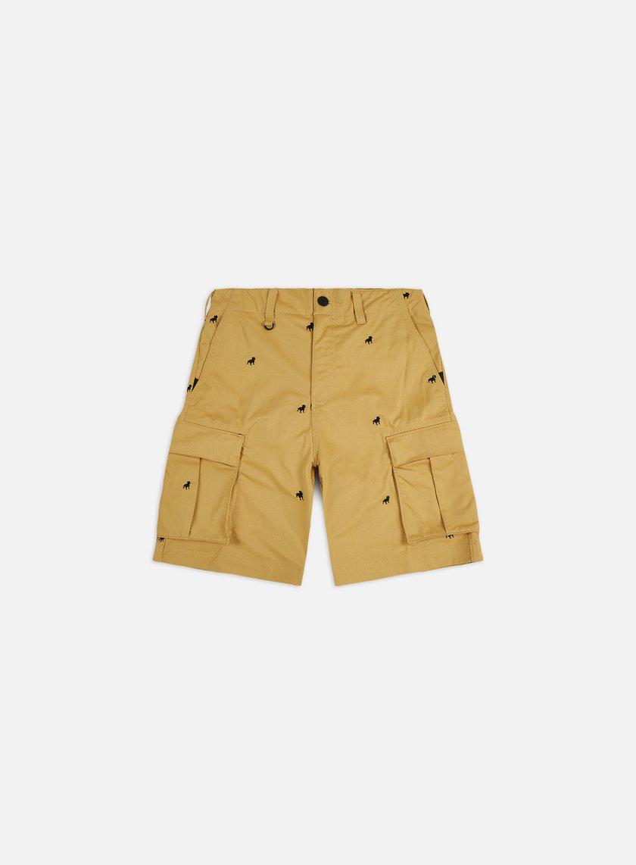 Nike SB Iso Shorts
