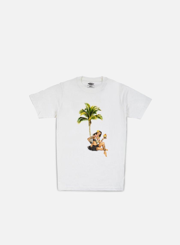 Dickies Janesville T-shirt