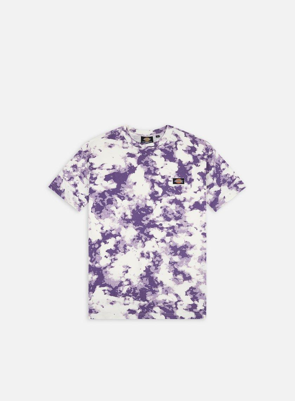 Dickies Sunburg T-shirt